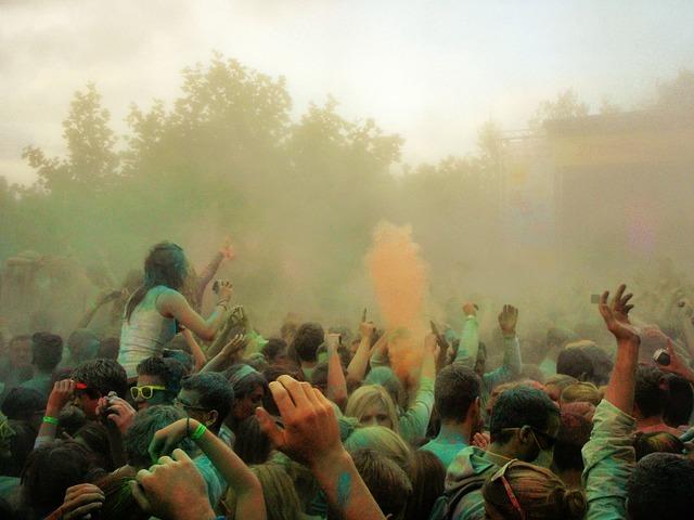 野外コンサートで盛り上がる観客